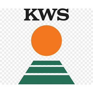KWS-3381 25MK