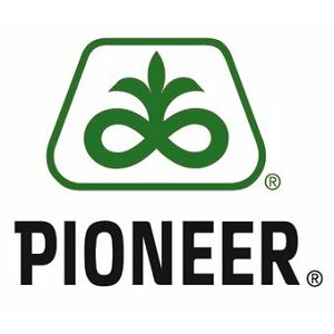 PIONEER-P8812 LUMI STANDARD 25MK
