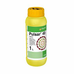 PULSAR 40 SL