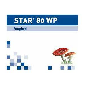 STAR 80 WP